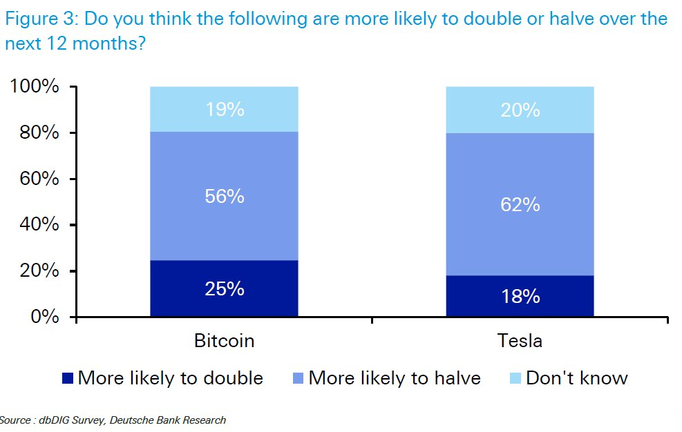 Bitcoin Near 'Extreme Bubble' but Tesla More Vulnerable: Deutsche Bank Survey