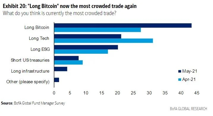 Bank of America Survey: 'Long Bitcoin' Is Most Crowded Trade, 75% of Fund Managers See BTC as Bubble